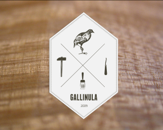 Gallinula Workshop