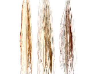 Fine Hairbrush