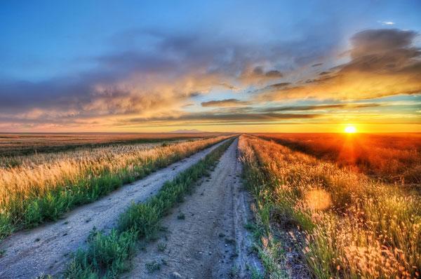 Long Road in Montana