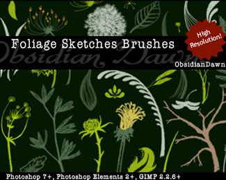 Foliage Sketches Brushes