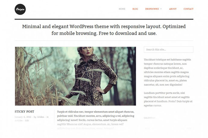 minimalist-wordpress-website-templates-39