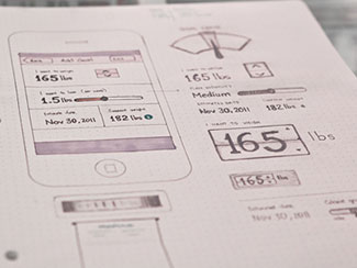 Food goal wireframe