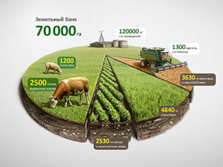 Infographic Agro Chart