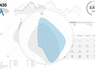 Radar Chart Wireframe