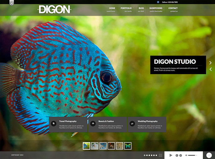 Digon Responsive Fullscreen Studio for WordPress