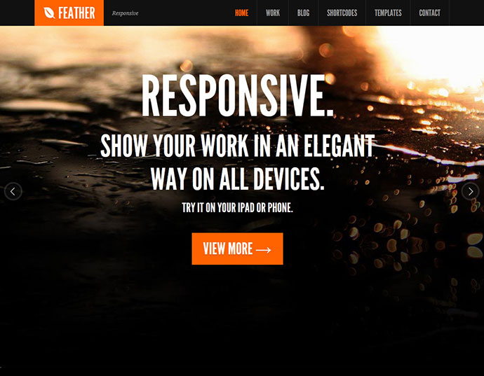 Feather - Responsive Portfolio WordPress Theme