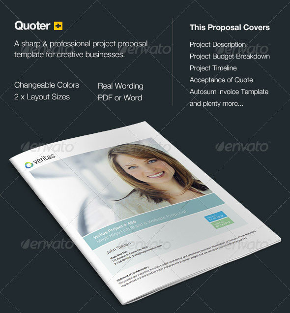 20 creative invoice proposal template designs web graphic quoter proposal flashek Image collections
