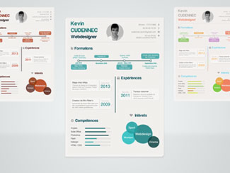infographic resume psd