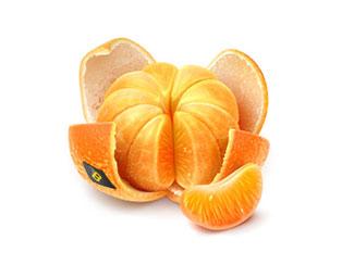 Clementine season