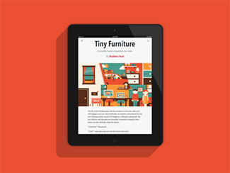 Tiny Furniture Illustr...