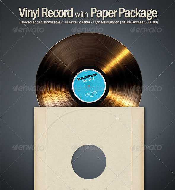 Vinyl Record Disk