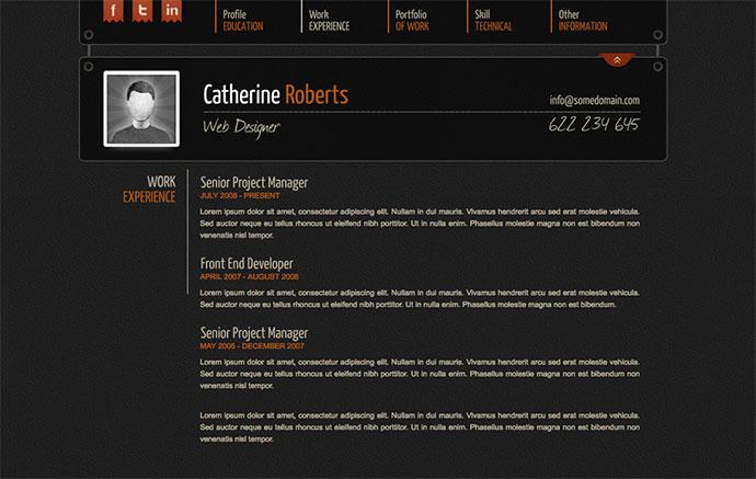 online cv website template