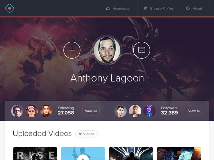 Gamer Profile