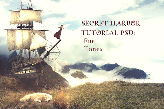 Secret Harbor