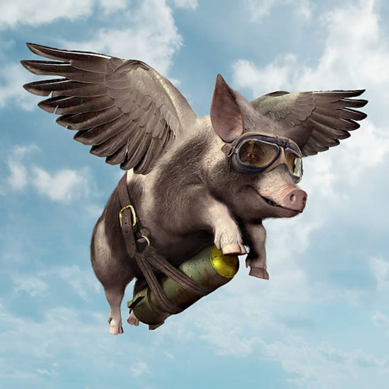 Create a Flying Pig with Poser and Photoshop