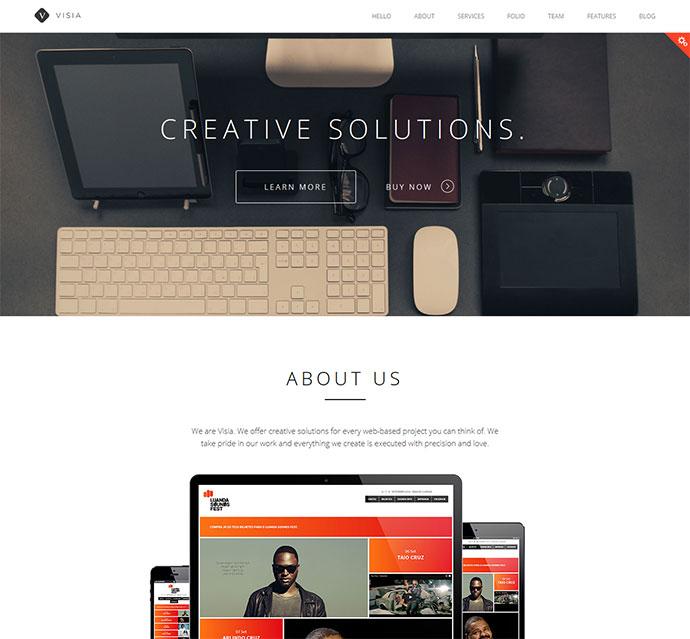 Visia Drupal one-page parallax portfolio