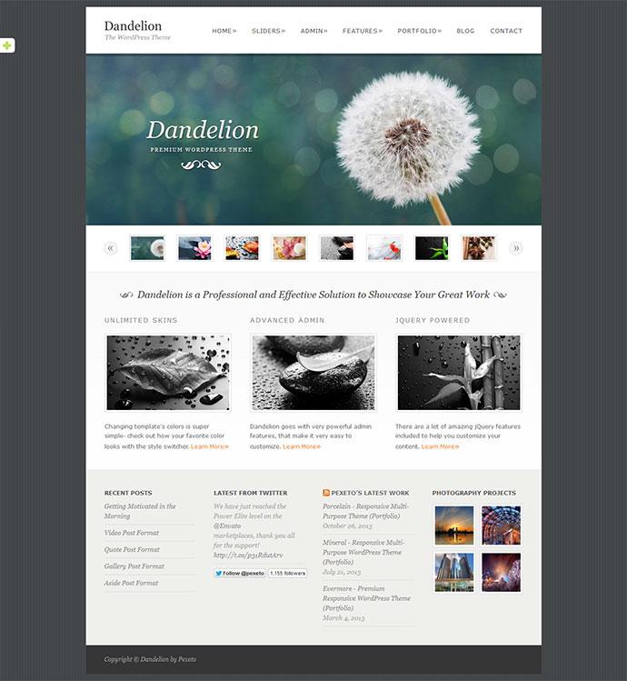 Dandelion-5