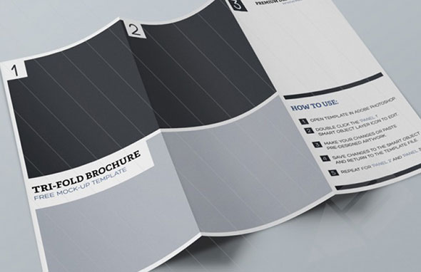 Free_Tri-Fold_Brochure_Mock-up