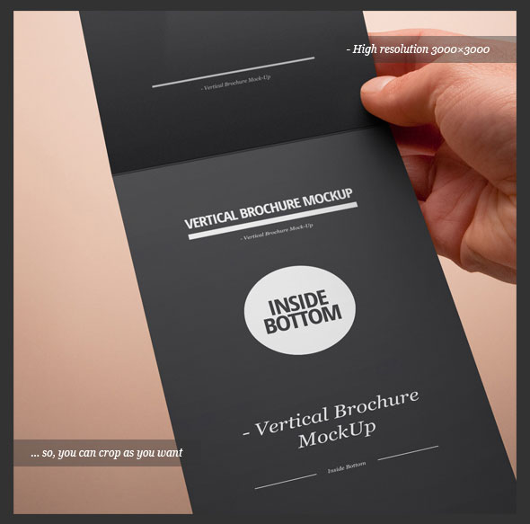 vertical-brochure