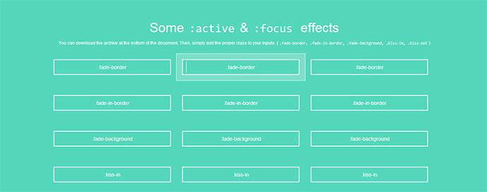 active-focus-effect-1
