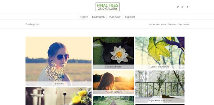 15 Best Wordpress Portfolio & Gallery Plugins – Bashooka