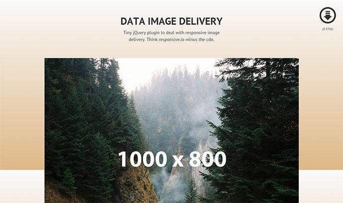 data-img-7
