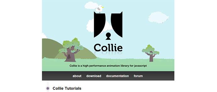 collie-7