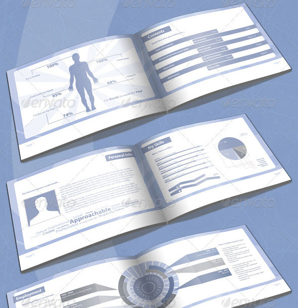 infographic-resume-booklet-5