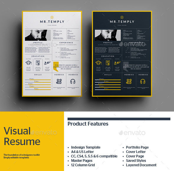 visual-resume-7