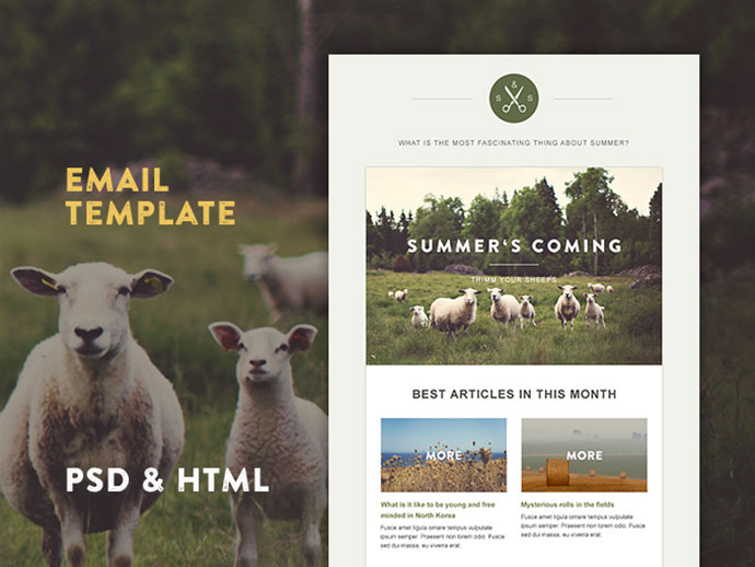 responsive-email-template-8