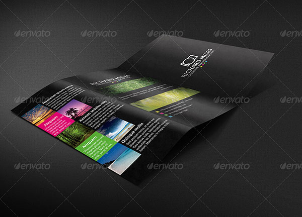 trifold-8