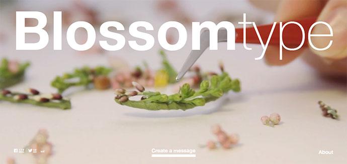 blossom-type-9