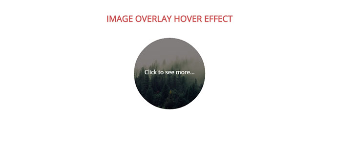 image-overlay-13