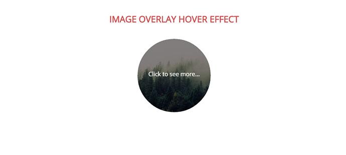 31 Cool Hover Effects – Bashooka