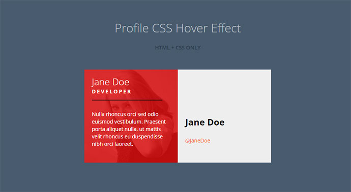 profile-hover-effect-29