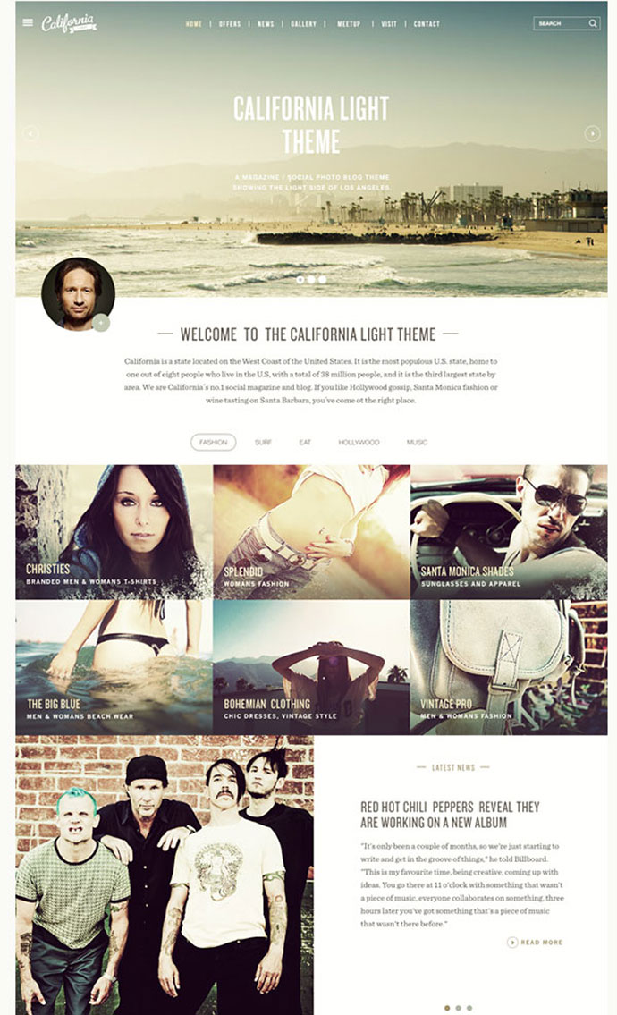 California Light & Dark FREE PSD themes