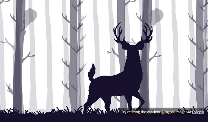 stag-5