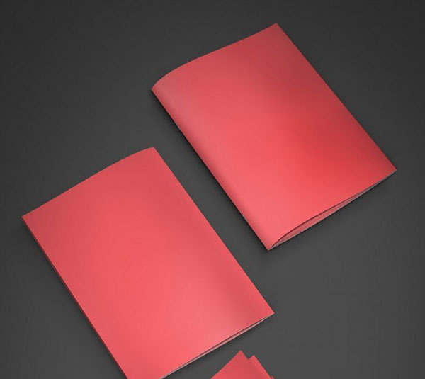 Free-A4-Booklet-Mockup-22