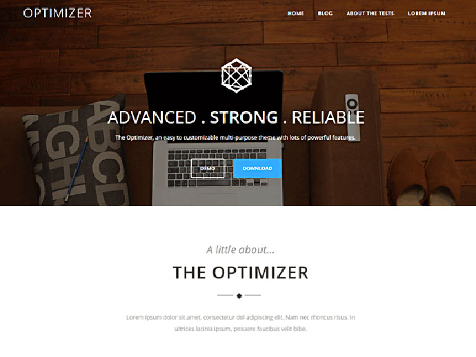 Optimizer