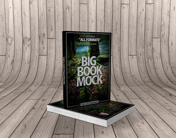 Book Mockup Dimension 160 x 225 mm