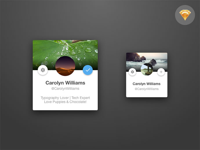 Twitter Card Concept - Sketch Files Included
