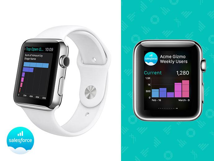 Salesforce Wave (Analytics) Apple Watch V1