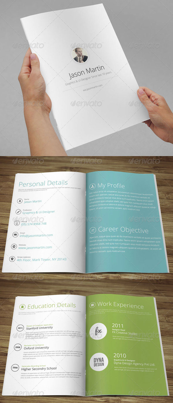 Metro Style Professional Business Resume