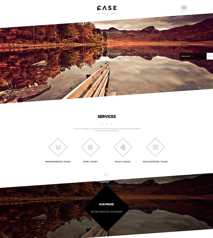 Case / Parallax One-page WordPress Theme