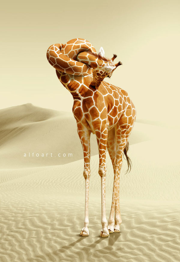 Giraffe Neck Knot Photo Manipulation