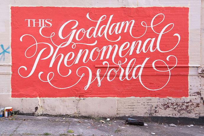 Goddam Phenomenal World
