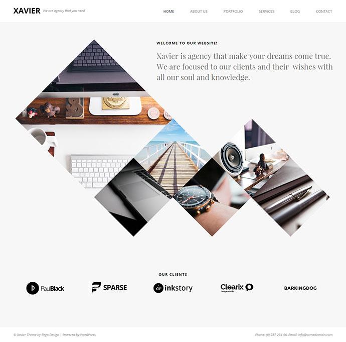 xavier-9