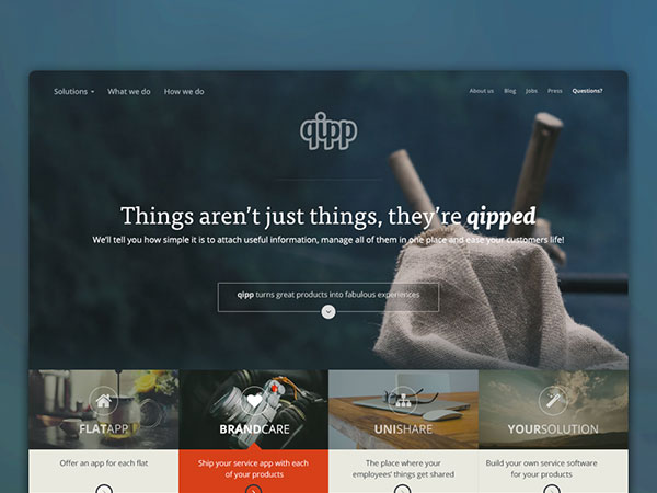 Hero Video + Header Section - QIPP