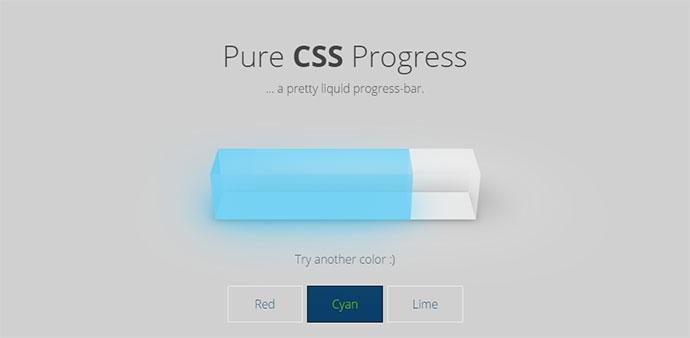 Pure CSS Progress