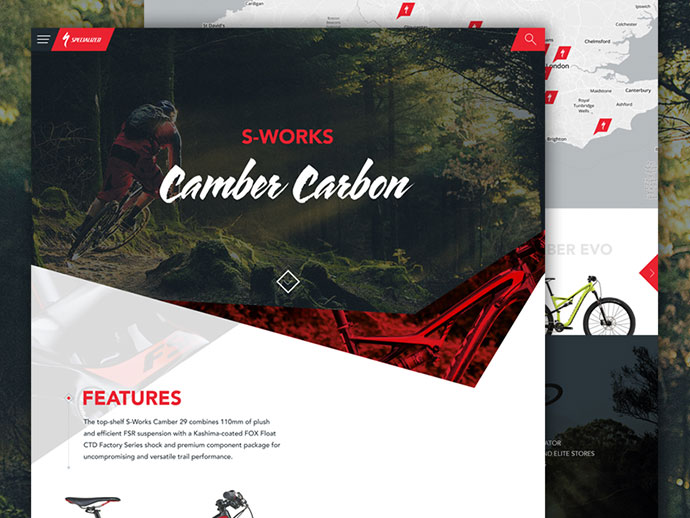 Specialized Website Concept
